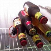 8 trucos ingeniosos para poner orden en tu frigorífico