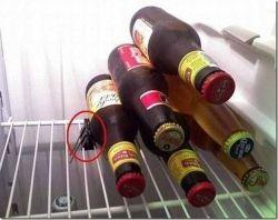 pinzas-cervezas-frigorifico