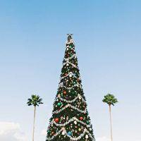 7 decoraciones de Navidad para la casa que no pueden faltar
